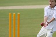 Complete Cricket festival - Summer 2010