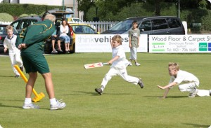 Complete Cricket festival - Summer 2010