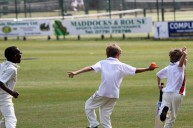 Complete Cricket Festival No.2 - Summer 2010