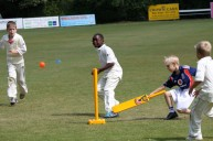 Complete Cricket Festival No.2 - Summer 2010